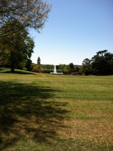 South Lawn toward the Ellipse