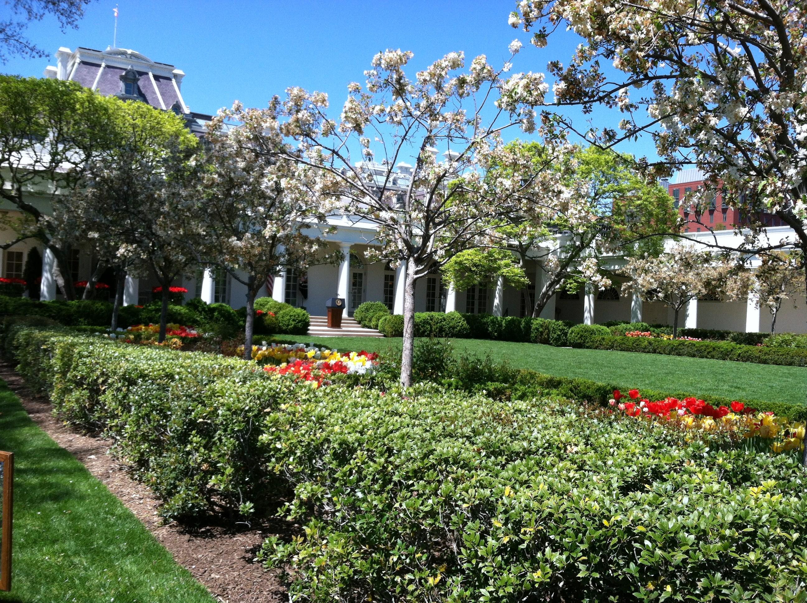 White House Kitchen Garden White House Kitchen Garden Pegplant